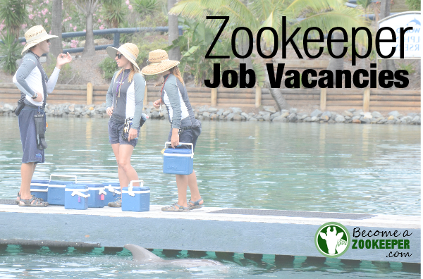 Zookeeper Job Vacancies